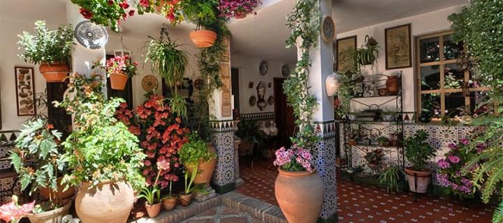 Patio de la calle parras 5 experiencias andalucia for Planos de casas con patio interior