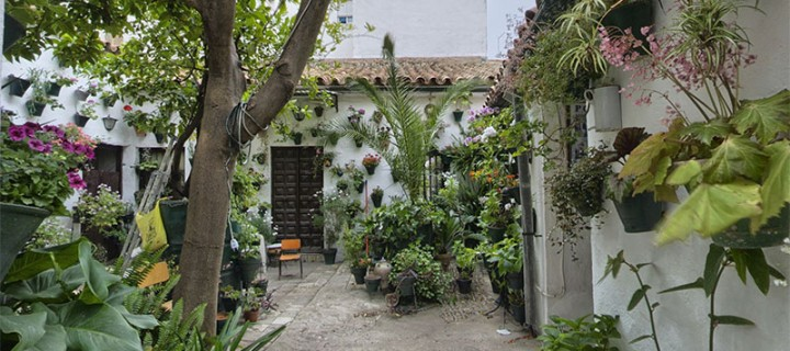 Patio de la calle Pozanco, 21