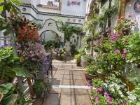 Casa-Patio de la calle Chaparro, 3