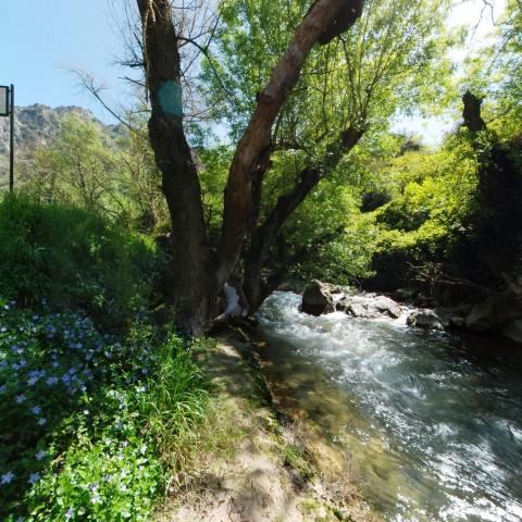 Garganta del río la Hoz